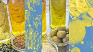 bon gras/lipides versus du mauvais gras