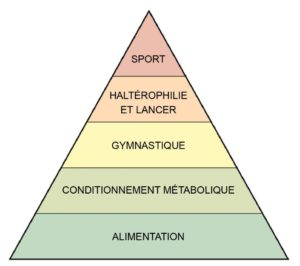 pyramide de développement d'un athlète
